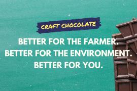 craft chocolate cacao magazine