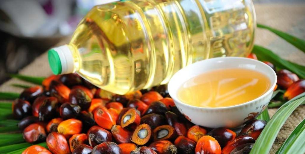vegetable fats palm oil chocolate